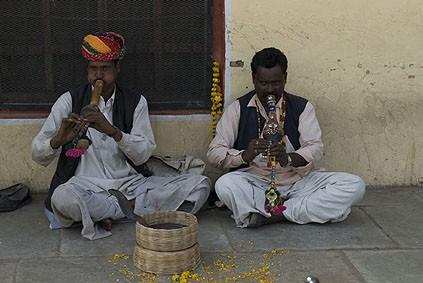 джайпурские заклинатели змей